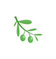 branch of olives icon flat style vector image vector image