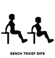 chair bench triceps dips sport exersice vector image vector image