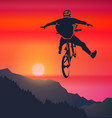 freeride bicycle racer vector image vector image