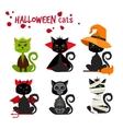 Halloween black cat fashion costume outfits vector image