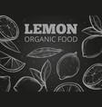 sketch leaves and lemons blackboard background vector image vector image