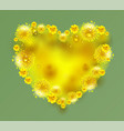 yellow mimosa flowers heart shape on green vector image vector image