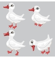 Cartoon white duck in four poses animals vector image