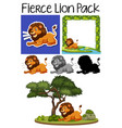 a pack of fierce lion vector image vector image