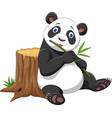 cute panda cartoon vector image