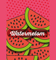 fruit watermelon on the dotted background vector image