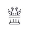 indoor plant line icon concept indoor plant vector image