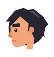 physiognomy of boy brunet haired man face profile vector image