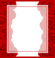red rose banner card border vector image vector image
