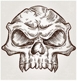 skull sketch design vector image vector image