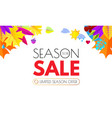 autumn sale seasonal offer poster template vector image