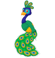 Cartoon beauty peacock isolated on white backgroun vector image vector image