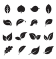 collection leaf icons vector image vector image