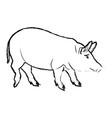cute pig cartoon animal farm image vector image vector image