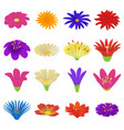 detailed flowers icons set cartoon style vector image
