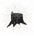 tree stump vintage label hand drawn sketch grunge vector image vector image