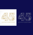 45 anniversary vintage silver gold vector image vector image