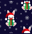 bunny with a gift in a christmas cap vector image