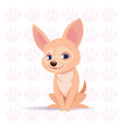 dog chihuahua happy cartoon sitting over vector image