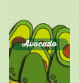 fruit avocado on the dotted background vector image