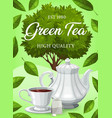 green tea leaves drink cup tea bag and pot vector image vector image