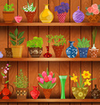 rustic kitchen interior with herbs and flowers vector image