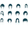 Set of womans hairstyles icons vector image vector image