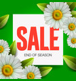 summer sale lettering and bouquet realistic daisy vector image vector image