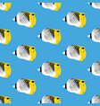 treadfin butterflyfish seamless pattern vector image