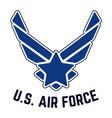 us air force vintage t-shirt stamp vector image