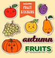 autumn fruit stickers vector image