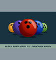 bowling balls icon game equipment professional vector image