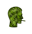 cannabis smoker male head silhouette vector image