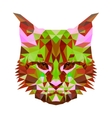low poly abstract portrait of a motley cat vector image vector image