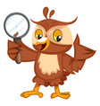 owl with magnifying glass on white background vector image vector image