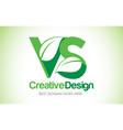 vs green leaf letter design logo eco bio leaf vector image vector image