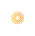 abstract sun logo orange color icon isolated vector image vector image