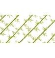 Bamboo seamless diagonal pattern vector image vector image