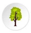 big green tree icon circle vector image vector image