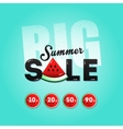 Big summer sale with a piece of watermelon vector image vector image