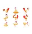 funny hen set comic cartoon bird characters in vector image