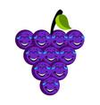 happy grapes emoticon vector image