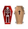 Skeleton in coffin Open casket and skull and bones vector image vector image