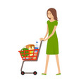 woman and shopping cart with products health food vector image vector image