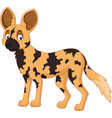cartoon african wild dog vector image vector image