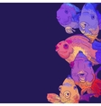 Colorful Greeting Card with Fish vector image vector image