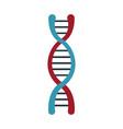 dna molecule structure science genetic structure vector image