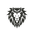 lion symbol logo or tattoo concept vector image vector image