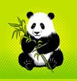 panda bear with bamboo pop art style vector image vector image