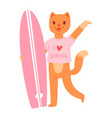 surf cat animal surfer character surfing on vector image vector image